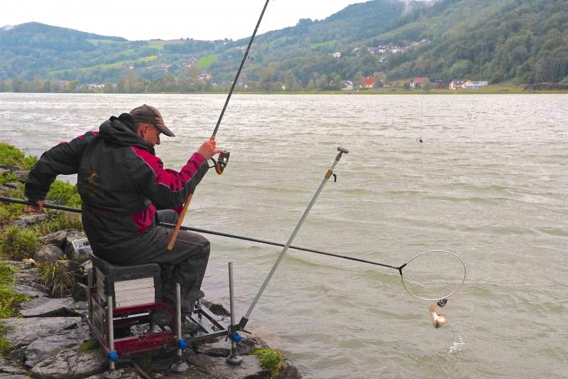 Angeln an der Donau