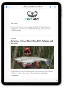 Fisch Ahoi Newsletter