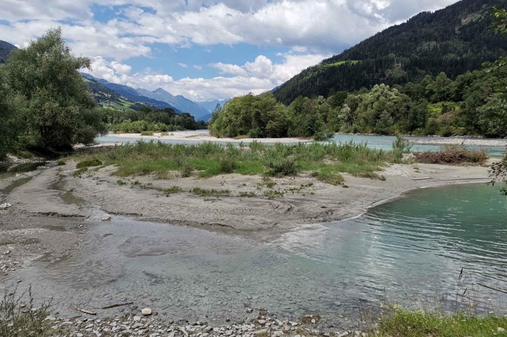 Die Isel ist eines der letzten frei fließenden Gewässer Österreichs, da sie kein Querbauwerk hat. (Foto: Renate Hölzl)